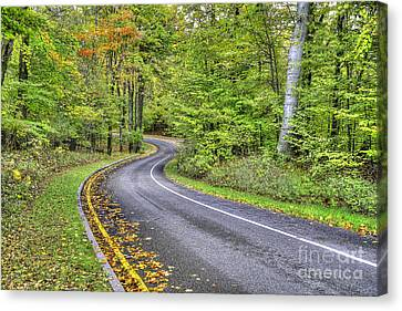 Scenic Drive Canvas Print - Pierce Stocking Scenic Drive In Fall by Twenty Two North Photography