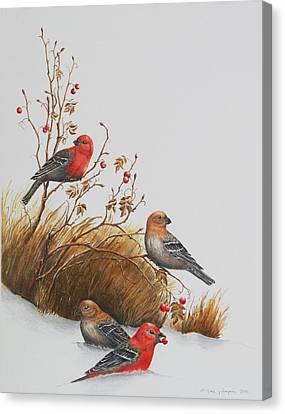 Pine Grosbeaks Canvas Print by Gina Gahagan