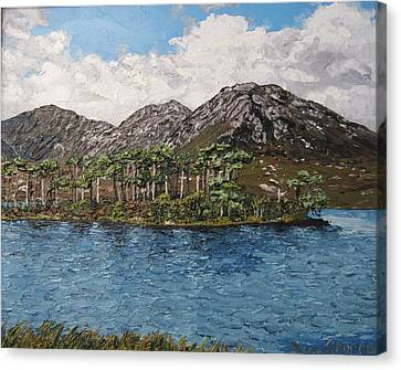 Pine Island Derryclare Lough Connemara Ireland Canvas Print by Diana Shephard