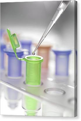 Pipette And Vial Canvas Print