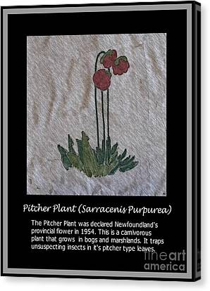 Pitcher Plant Canvas Print by Barbara Griffin