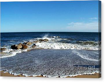Canvas Print featuring the photograph Plum Island Landscape by Eunice Miller