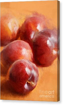 Plums Canvas Print by HD Connelly