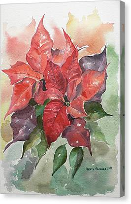 Poinsettias Canvas Print by Geeta Biswas