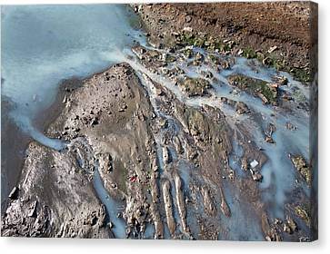 Drain Canvas Print - Polluted Waterway by Ashley Cooper
