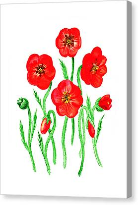 Poppies Canvas Print by Irina Sztukowski