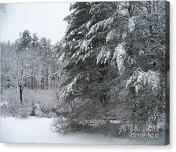 Powdered Sugar Canvas Print