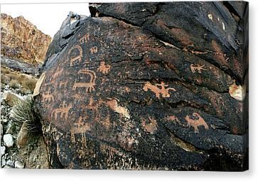 Prehistoric Rock Art Canvas Print
