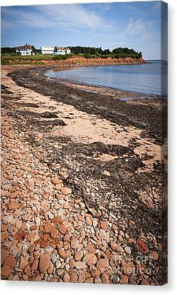 Prince Edward Island Coastline Canvas Print by Elena Elisseeva