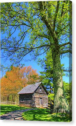 Puckett's Cabin Canvas Print by Paul Johnson
