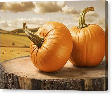 Bales Canvas Print - Pumpkins by Amanda Elwell