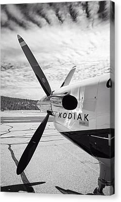 Quest Kodiak Aircraft Canvas Print by Daniel Hagerman