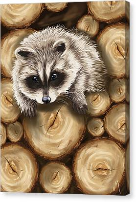 Raccoon Canvas Print by Veronica Minozzi