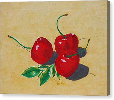 Red Cherries Canvas Print by Johanna Bruwer