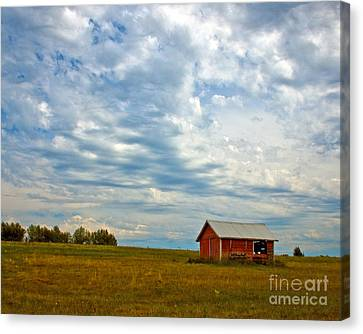 Red Shed   Canvas Print by Chuck Flewelling