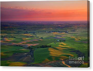 Red Skies Over The Palouse Canvas Print by Mike  Dawson