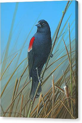 Canvas Print featuring the painting Red-winged Black Bird by Mike Brown