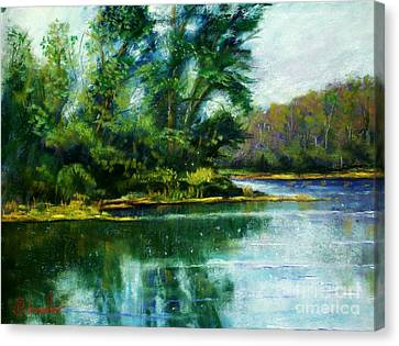 Reflections Canvas Print by Bruce Schrader