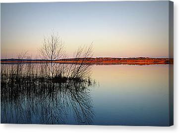 Reflections On Lake Jackson Tallahassee Canvas Print by Paul  Wilford