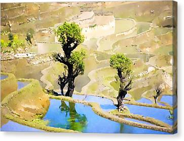 Chinese Peasant Canvas Print - Rice Terraces Of Yuanyang by Lanjee Chee