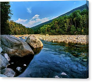 White River Scene Canvas Print - River Flowing Through A Forest, Swift by Panoramic Images