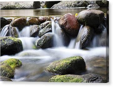 River Rocks Canvas Print by Jenna Szerlag