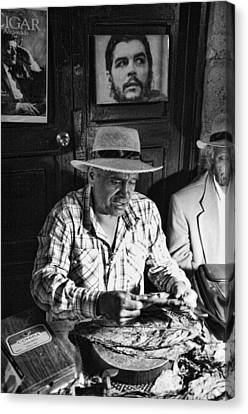 Rolling Cuban Cigars Canvas Print by Hugh Smith