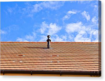 Roof Tiles Canvas Print by Tom Gowanlock