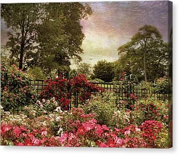 Rose Garden Trellis Canvas Print