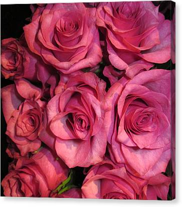 Rosebouquet In Pink Canvas Print