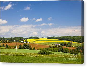 Rural Landscape Canvas Print by Elena Elisseeva