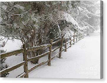 Rural Winter Scene With Fence Canvas Print by Elena Elisseeva