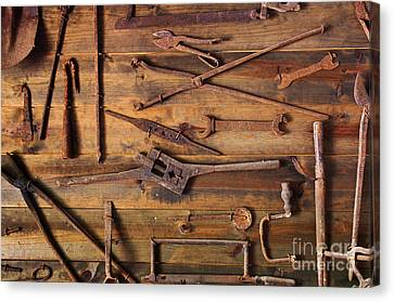 Rusty Tools Canvas Print by Carlos Caetano