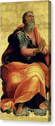 Saint Paul The Apostle Canvas Print by Marco Pino