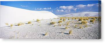 Sand Dunes In A Desert, White Sands Canvas Print