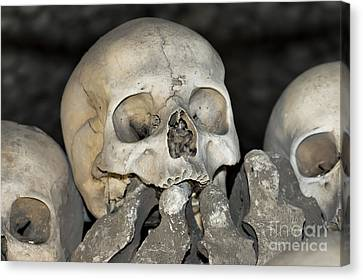 Sedlec Ossuary - Charnel House Canvas Print by Michal Boubin