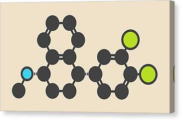 Sertraline Antidepressant Drug Molecule Canvas Print