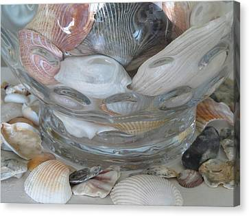 Shells In Bubble Bowl 2 Canvas Print