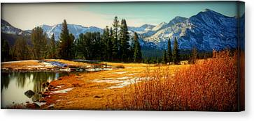 Sierra Panorama Canvas Print by Lynn Bawden