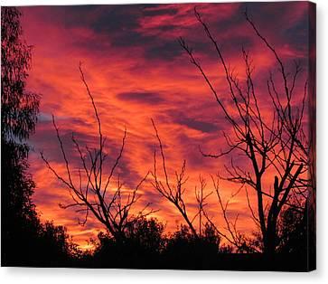 Sky On Fire Canvas Print by Joyce Woodhouse