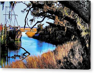 Canvas Print featuring the photograph Sleeping Shrimper by Ed Roberts