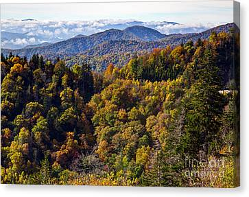 Smoky Mountain Color II Canvas Print by Douglas Stucky