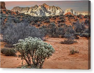 Snow Canyon State Park Utah Canvas Print by Utah Images