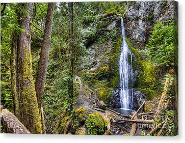 Olympic National Park Canvas Print - Sol Duc Falls by Twenty Two North Photography
