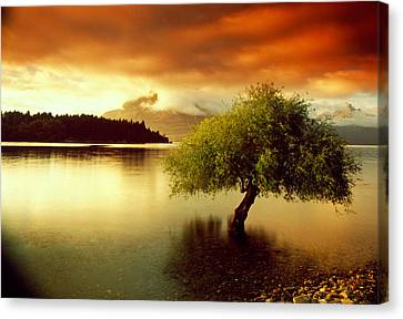 South Island New Zealand Canvas Print by Panoramic Images