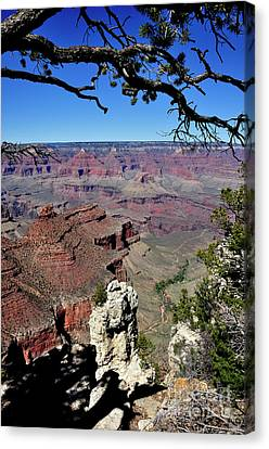 South Rim Of The Grand Canyon Canvas Print by Thomas R Fletcher