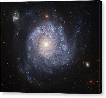 Spiral Galaxy Canvas Print by Nasa