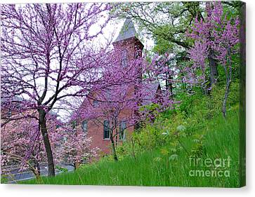 Spring Colors Canvas Print by Edward Sobuta