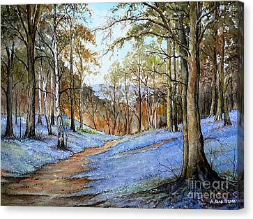 Spring In Wentwood Canvas Print by Andrew Read