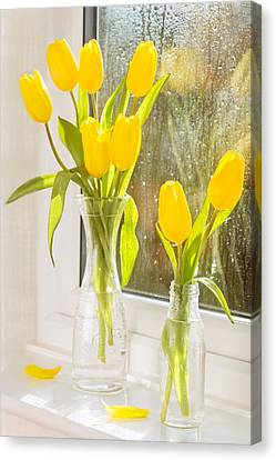 Glass Bottle Canvas Print - Spring Tulips by Amanda Elwell